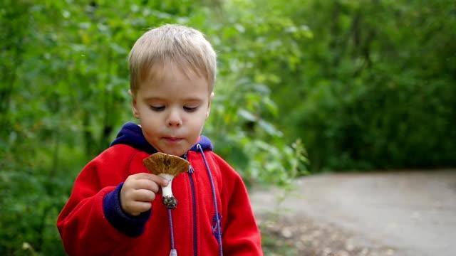 a child walks in park in autumn. a child holds a white mushroom - abbigliamento da neonato video stock e b–roll