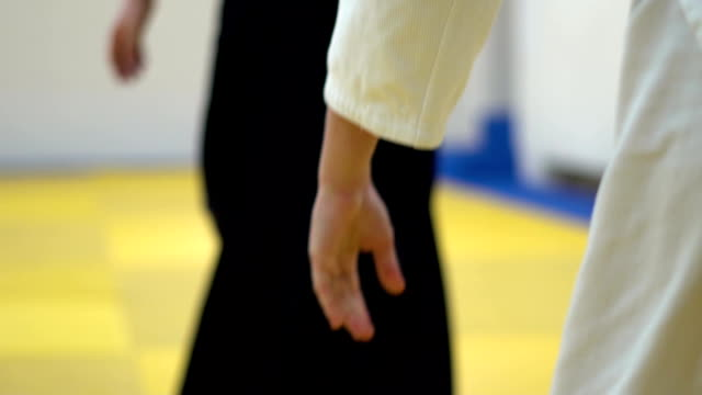 a lesson in Aikido video
