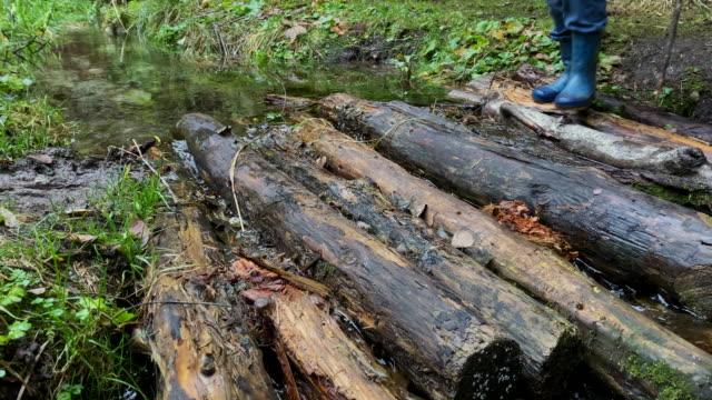 a little boy with rubber boots walks over a wooden bridge in the woods. it's autumn and it's raining - powojnik pnący filmów i materiałów b-roll
