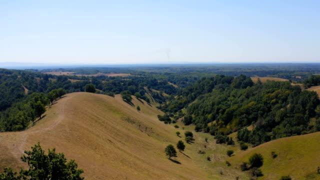 aşağıda bir panorama ile bir tepeüzerinde yalnız bir ağaç - sale stok videoları ve detay görüntü çekimi