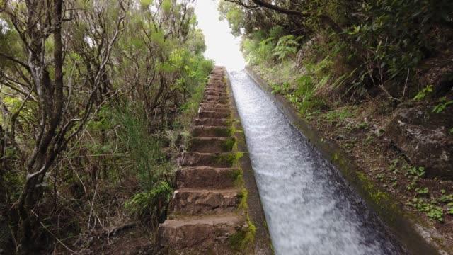 vídeos de stock e filmes b-roll de pov of a man climbing stone stairs in levada do alecrim, madeira island - ilha da madeira