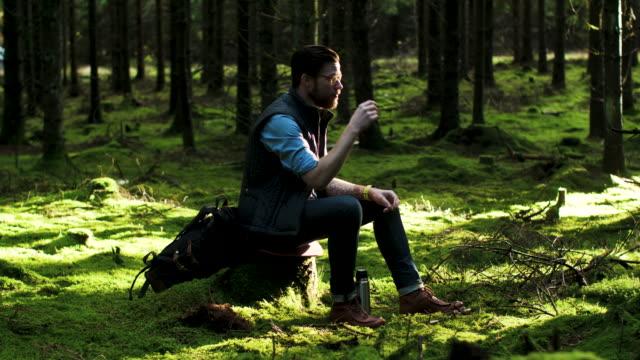 en man tar en paus i skogen - swedish nature bildbanksvideor och videomaterial från bakom kulisserna