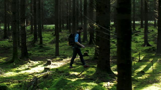 vídeos de stock e filmes b-roll de a man walking in the forest - plano charriot
