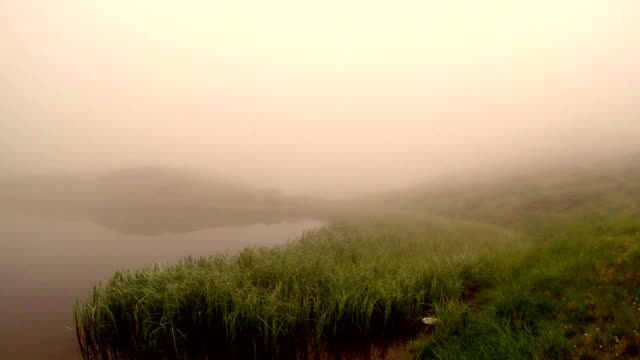 a Thick Fog Descends on The Shore of The Lake in the Mountains, Which Are Covered With Thickets of Reeds video