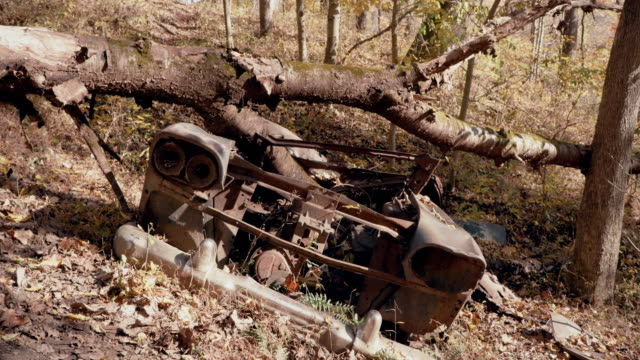 Abandoned Antique Car in Forest - Old and Rusted