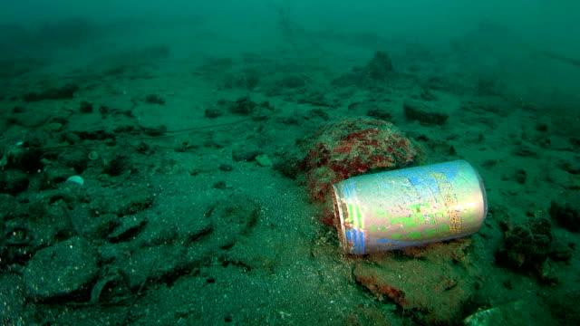 Abandoned beverage bottle floating underwater video