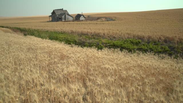 Abandoned Farmhouse Dolly Shot Washington State 4k Uhd Stock