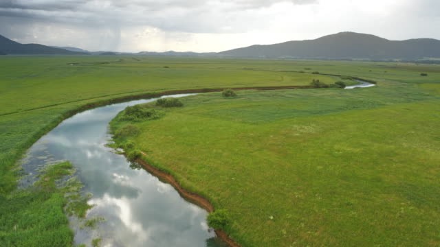 AERIAL Above a river in the cloudy marsh