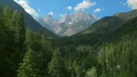 istock AERIAL Above the forest trees towards the mountains 1023090642
