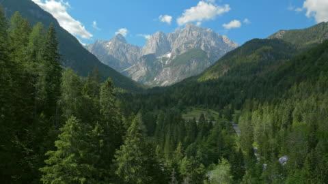 antenna sopra gli alberi della foresta verso le montagne - mountain video stock e b–roll