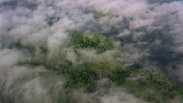 AERIAL Above the white clouds covering the lakes in Ontario