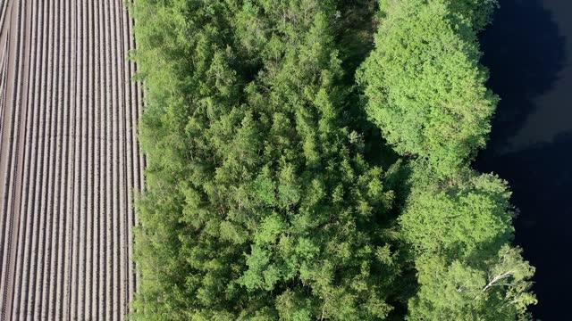 abstraktes luftbild, vertikale ansicht eines frisch gepflügten feldes, grüne bäume und ein dunkler wasserkörper - aerial view soil germany stock-videos und b-roll-filmmaterial