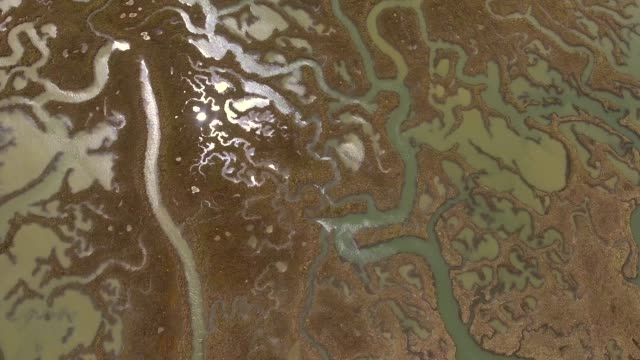 stockvideo's en b-roll-footage met abstracte luchtfoto van wetlands rivier landschap in nederland. - broek