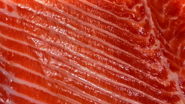 vídeos de stock e filmes b-roll de abstract background fresh salmon texture - meat texture