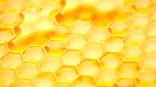 vídeos de stock e filmes b-roll de abstract background. honey comb. - honeycomb