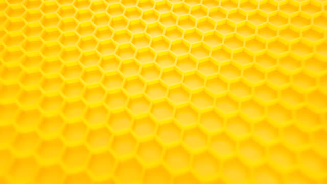 abstract background. honey comb. - favo video stock e b–roll