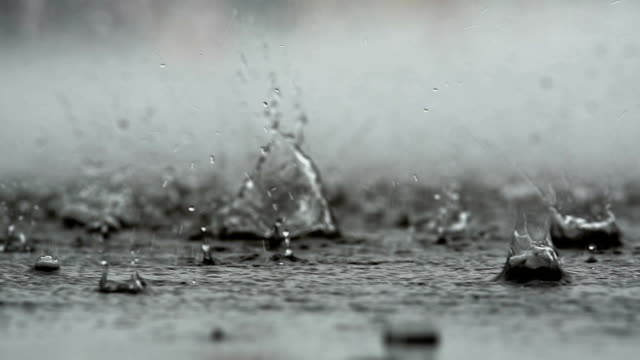 abstract background of rain falling on the ground abstract background of rain falling on the ground rain stock videos & royalty-free footage
