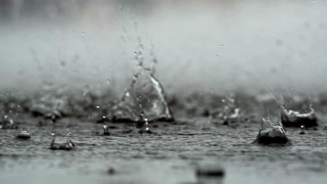 vídeos y material grabado en eventos de stock de antecedentes de la lluvia cayendo sobre el suelo - mojado