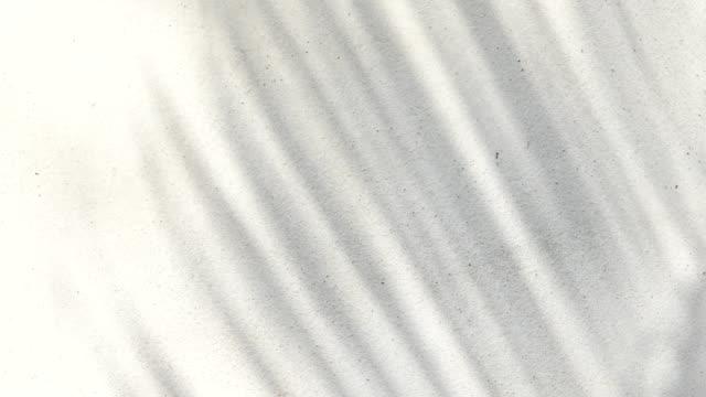 абстрактная фоновая текстура теней пальмовых листьев на бетоне - тени стоковые видео и кадры b-roll
