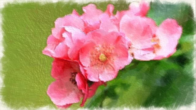 Abstract backgrounds , Bouquet of tiny pink roses , water color painting style