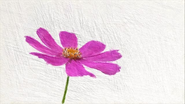 Abstract backgrounds , single pink cosmos , oil painting style