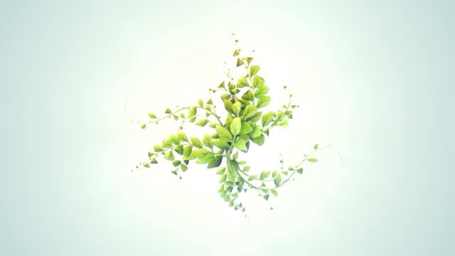 abstract digitaly plant growth background - kwiat roślina filmów i materiałów b-roll
