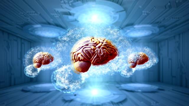 Abstract electric circuit digital brain Abstract electric circuit digital brain,technology concept heart internal organ stock videos & royalty-free footage