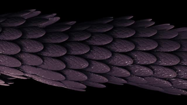 黒い背景、シームレスなループ上の粘着性物質で覆われた多くの羽の抽象的なエレガントな紫色の移動管。アニメーション。多くの小さな楕円形の羽 ビデオ