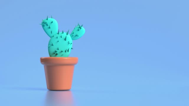 abstract green tree cactus pot 3d rendering motion cartoon style