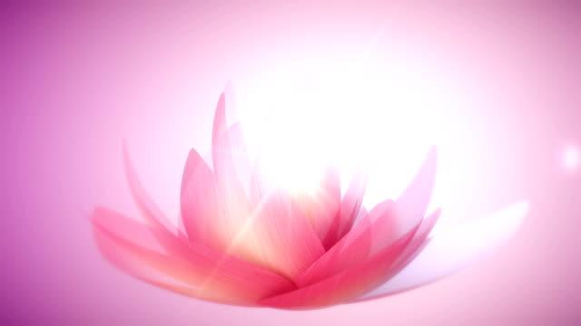 Abstrakten Lotus Hintergrund – Video