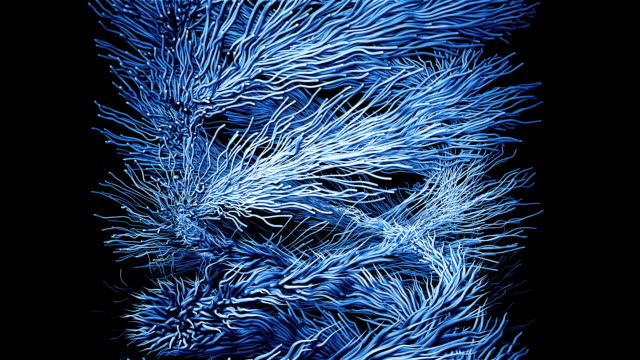 Abstract motion animation with particles tree from the bottom up video