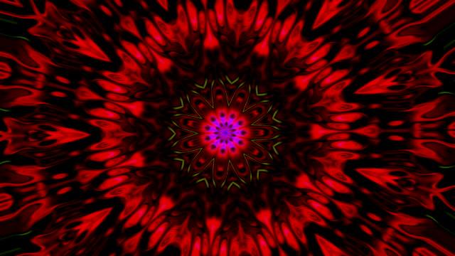 stockvideo's en b-roll-footage met abstracte beweging achtergrond met caleidoscoop uitzicht met vormen van bloemen die openen en sluiten met het veranderen van de beweging in de vormen in de kleuren rood en zwart - mandala