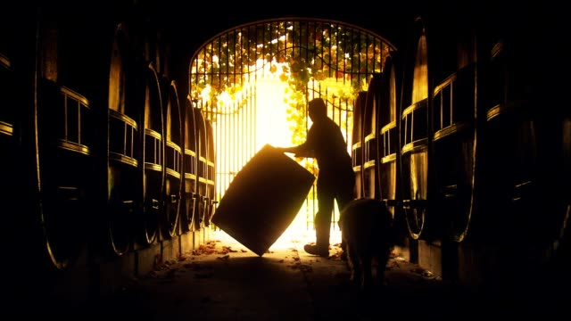 Abstract of vigneron winemaker rolling vintage wine barrel Abstract background Footage of vigneron winemaker rolling vintage red or white wine barrel in old winery cellar featuring rows of oak barrels after harvest ready to transport.  tasting stock videos & royalty-free footage