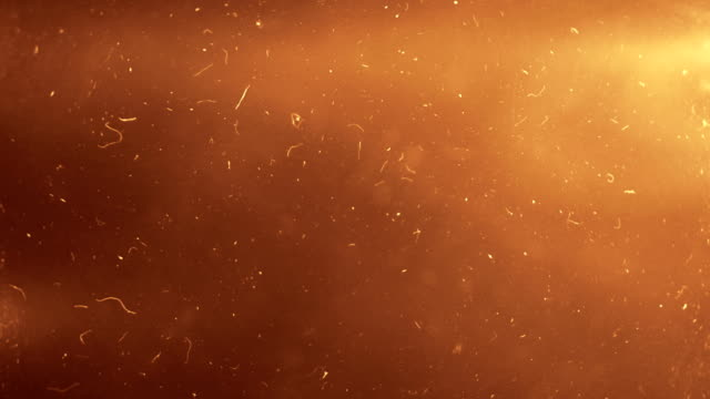 Abstract Particles Background video