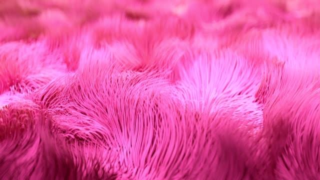 vídeos de stock e filmes b-roll de 4k abstract underwater kelp fur. - suavidade