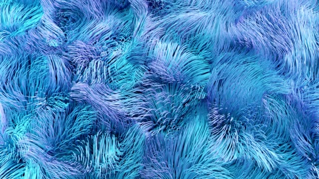 4k abstract underwater kelp fur. - lanuginoso video stock e b–roll