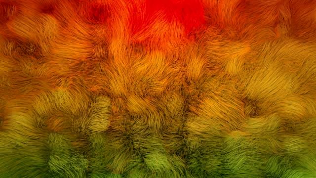 vídeos y material grabado en eventos de stock de 4k piel de kelp subacuática abstracta. - peludo