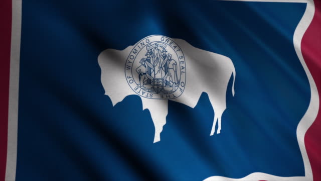 Abstract Wyoming state's flag waving in the wind. Animation. The flag of the state of Wyoming consists of the silhouette of an American bison
