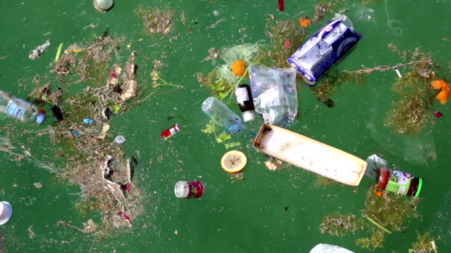 Abuse of environment. Garbage floats in the sea video