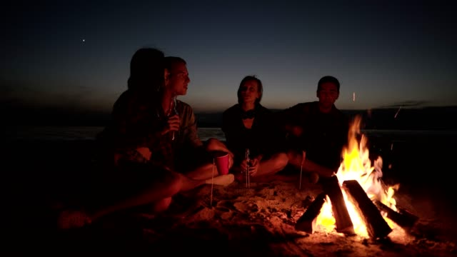 Accelerated fiootage of friends sitting on the beach on a plaid near the bonfire. Two couples spending time together, playing guitar, having fun Accelerated fiootage of friends sitting on the beach on a plaid near the bonfire. Two couples spending time together, playing guitar, having fun. bonfire stock videos & royalty-free footage