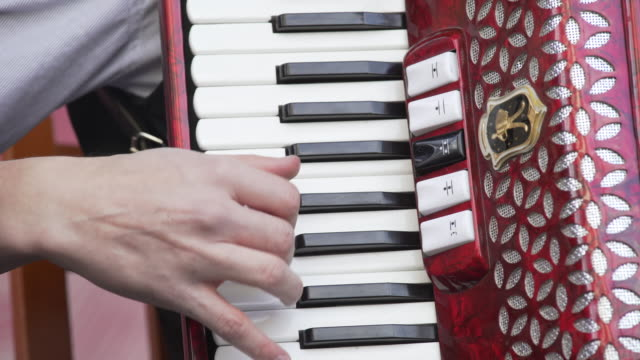 Accordion Player Performing On Stage Close-up (4K/UHD) video