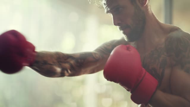 achieving his goals one punch at a time - colpire con un pugno video stock e b–roll