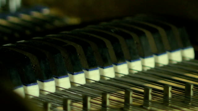 Acoustic Piano, Hammer close-up