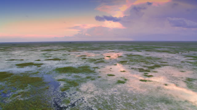 AERIAL Across the Everglades landscape at sunset