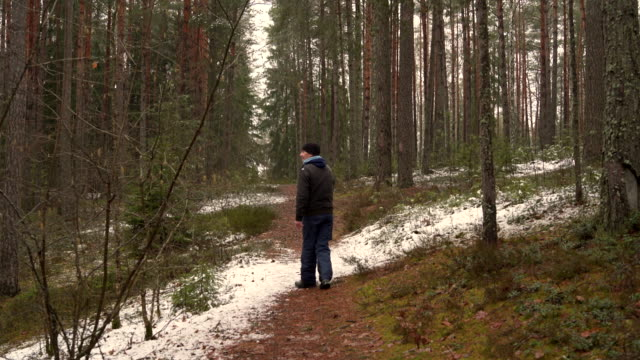 Active 70-years-old senior man walking in the winter forest Active senior, 70-years-old, Caucasian white man walking in the winter forest. Early spring, cold sunny weather, Belarus, eastern Europe firewood stock videos & royalty-free footage