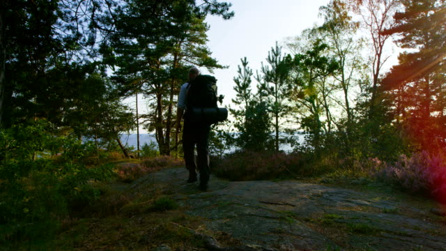 Active man with large backpack walks on the mountain by the sea at sunset Active man with large backpack walks on the mountain by the sea at sunset - healthy active lifestyle. Hiker trekking in beautiful green forest nature landscape at sunset. navigational compass stock videos & royalty-free footage