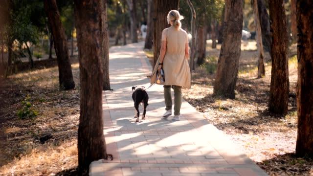 aktive reife frau wandern in der natur mit hund im frühjahr - hundesitter stock-videos und b-roll-filmmaterial