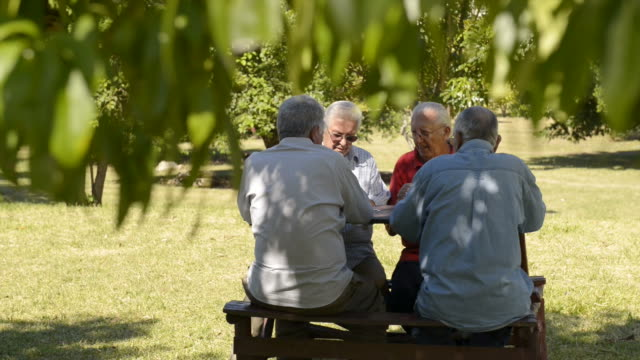 Active people, group of senior men playing cards and laughing video