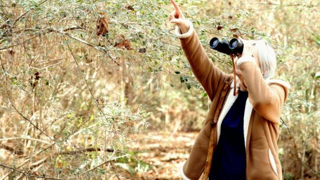 アクティブ シニアの大人の女性は雑木林でのハイキングします。 彼女は彼女の双眼鏡で鳥を見て - バードウォッチング点の映像素材/bロール