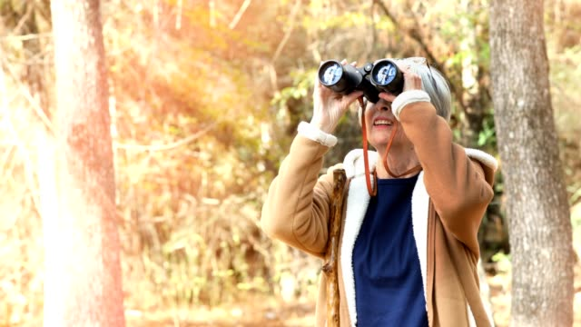 Active senior adult woman hiking in wooded area.  She is bird watching with her binoculars video